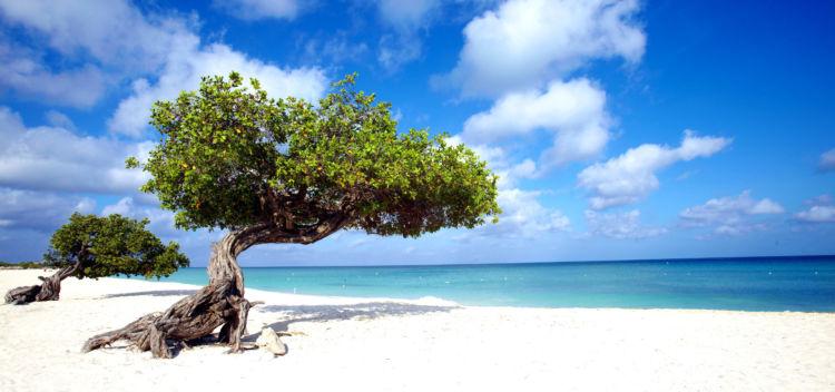 Vacanza a Cuba: Voli A/R per l'Havana da diversi aeroporti italiani a soli 492€